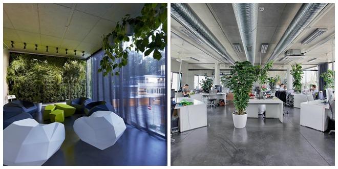 Twee voorbeelden van kantoren met veel groen in de inrichting