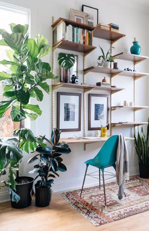Werkplek met veel planten