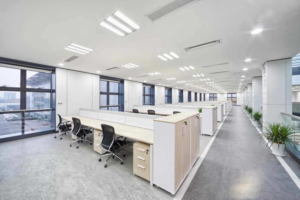 een groen kantoor met veel planten
