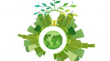 Duurzaam ondernemen voor een groenere wereld